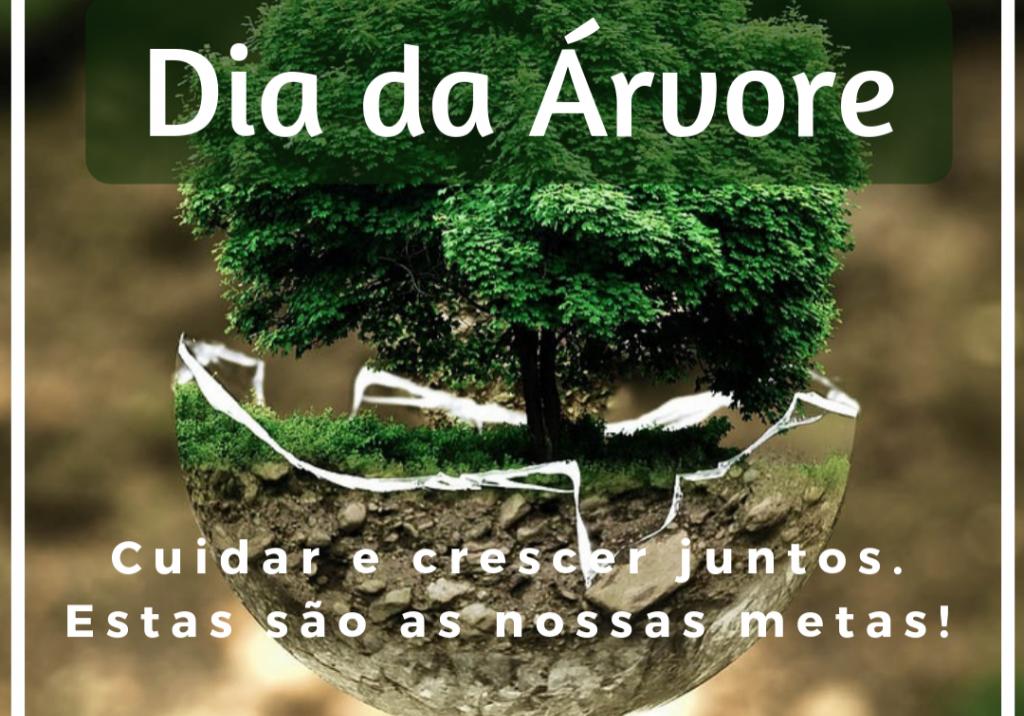 dia-da-árvore-FNBF